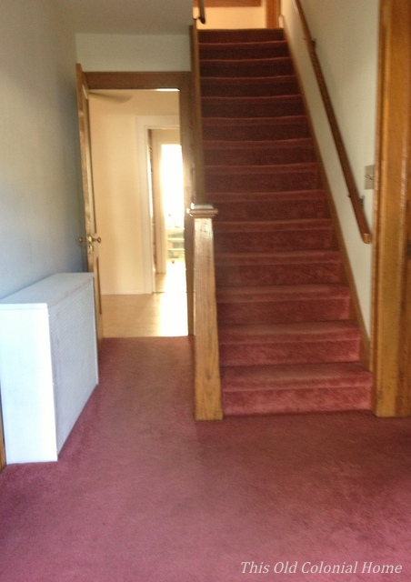 Center hall colonial stairs with carpet before