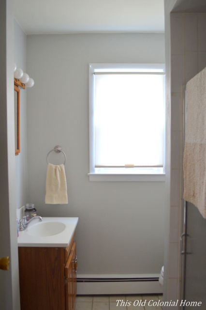 bathroom painted Cliffside Gray by Benjamin Moore