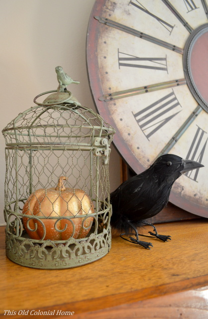 Crow and bird cage with gold pumpkin