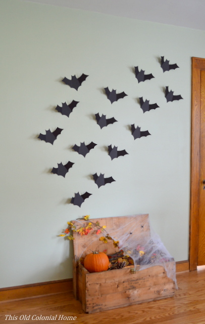 Bats flying out of crate