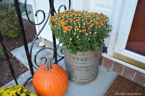 Metal planter and pumpkin