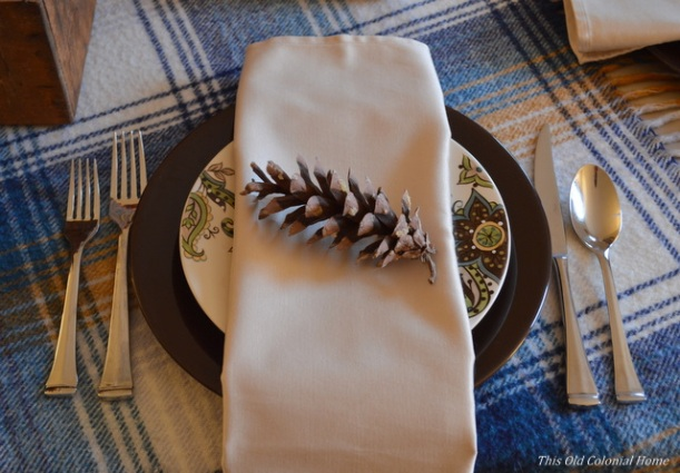 Thanksgiving place setting with napkin and pine cone
